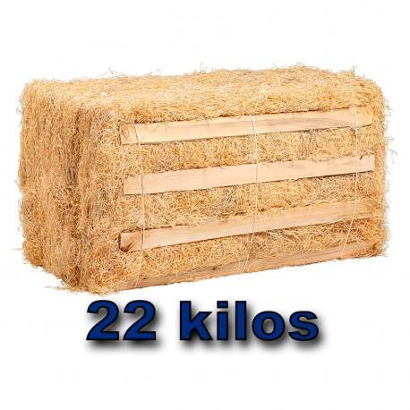 Viruta para embalar Fibra de madera de Chopo. 22 kilos